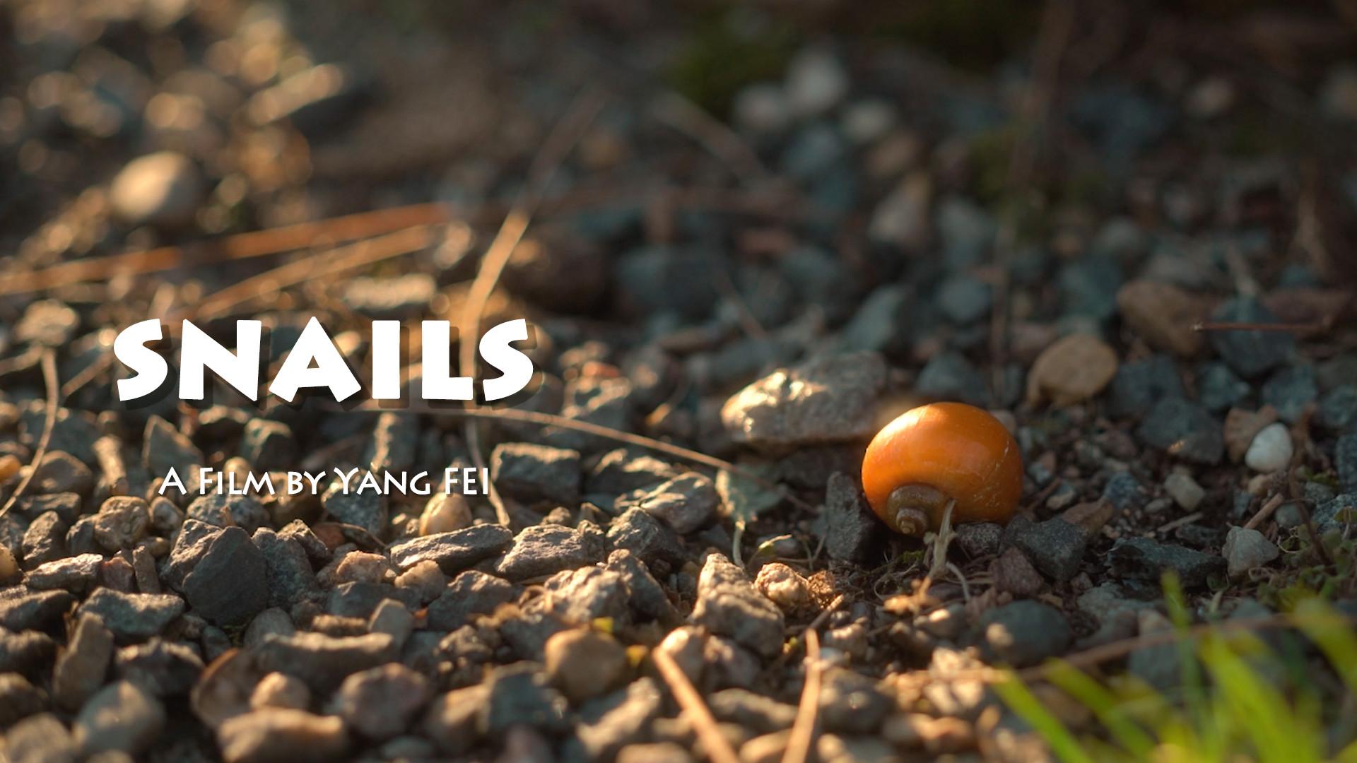 Snails Still_1